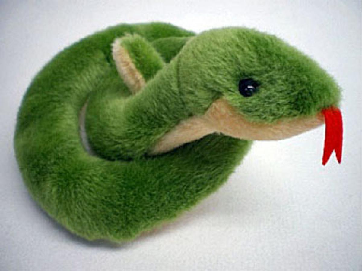 夢に蛇が出てくるのは良い暗示? 悪い暗示!?