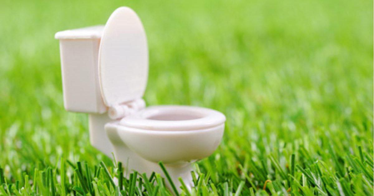 トイレの夢はあなたのプライバシー! 金運 健康運 愛情運
