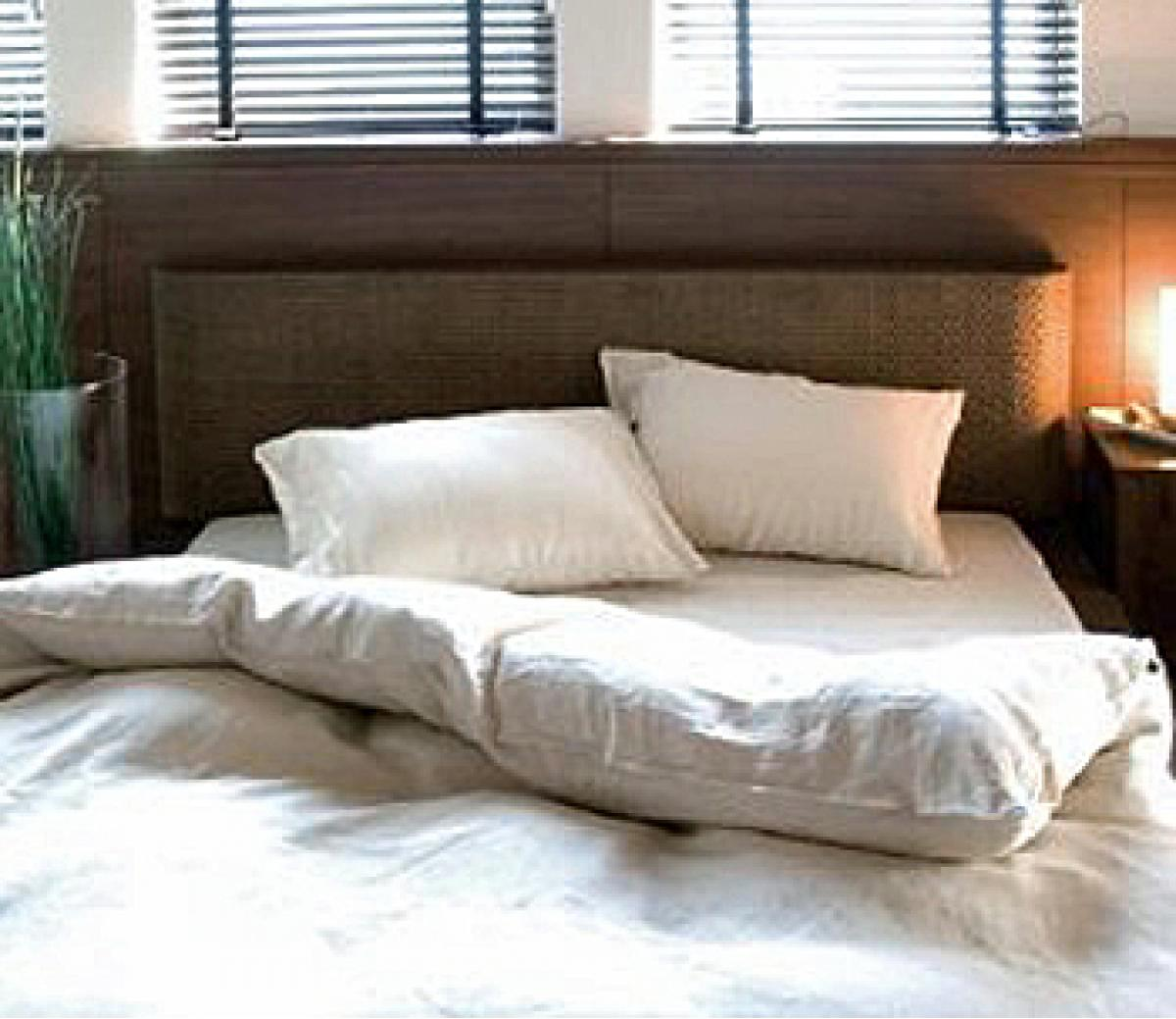 ベッドの夢に隠されたもう一つの意味とは!? あなたの性的な願望と幸福…ベッドの夢Part2